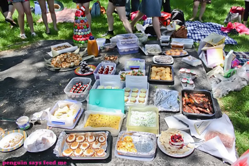 July 9th, 2017 – 32nd SUMMER PICNIC!